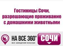 Гостиницы Сочи, разрешающие проживание с домашними животными, цены, описание, фотографии номеров, условия бронирования, виртуальные туры, отзывы гостей, сайт sochi.navse360.ru