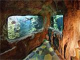 Тайны океана, океанариум