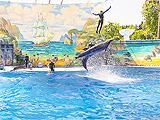 Ривьера, дельфинарий